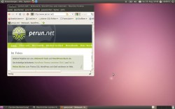 perun.net auf Ubuntu 10.04
