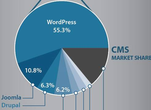 WordPress ist die Nummer 1