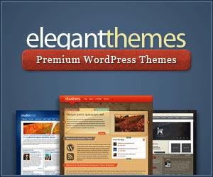 Elegante WordPress-Themes