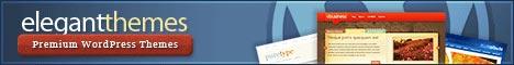 Elegant Themes: elegante WordPress-Themes