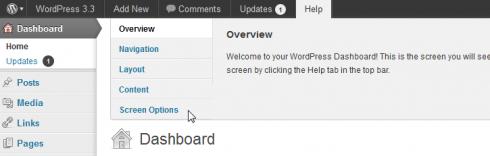 Screen Options als Teil der WordPress-Hilfe