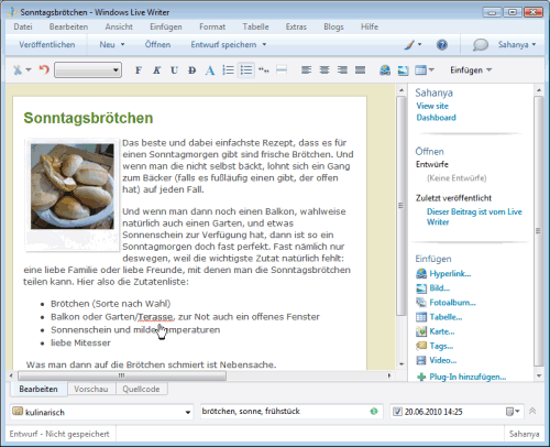 Mit Windows Live Writer von Microsoft Artikel in WordPress verfassen
