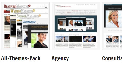 WordPress-Themes von Der-Prinz.de mit 25% Rabatt
