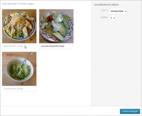 WordPress 3.5: Eine Galerie einrichten