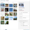 Hoch geladenes Bild in WordPress 3.5