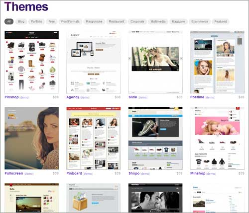 Premium WordPress-Themes von Themify