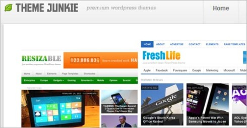 Premium WordPress-Themes
