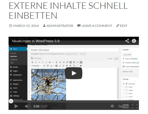 Eingebettes Video im Frontend von WordPress