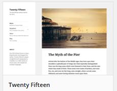 Vor- und Nachteile von Premium- und Freien WordPress-Themes