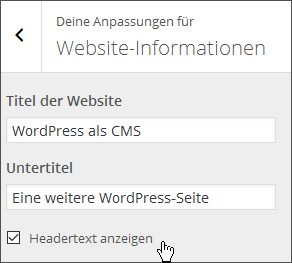 wordpress-website-informationen