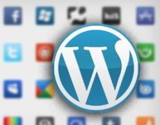 Mit sozialen Netzwerken in WordPress einloggen