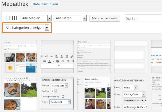Kategorien in der WordPress-Mediathek