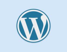 WordPress & Webwork: Top-15-Artikel in 2016 auf perun.net