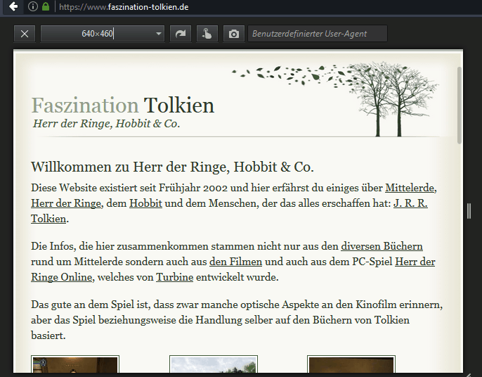 Symbolbild: Website im mobilen Simulator