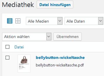 pdf-vorschau