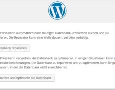 Die Konfigurationsdatei von WordPress aufbohren