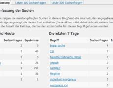Search Meter für WordPress: wonach suchen deine Besucher