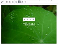 WordPress: Medien im Gutenberg-Editor
