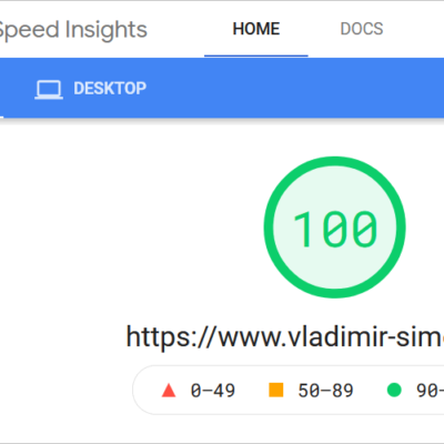 100 % bei Google PageSpeed Insights